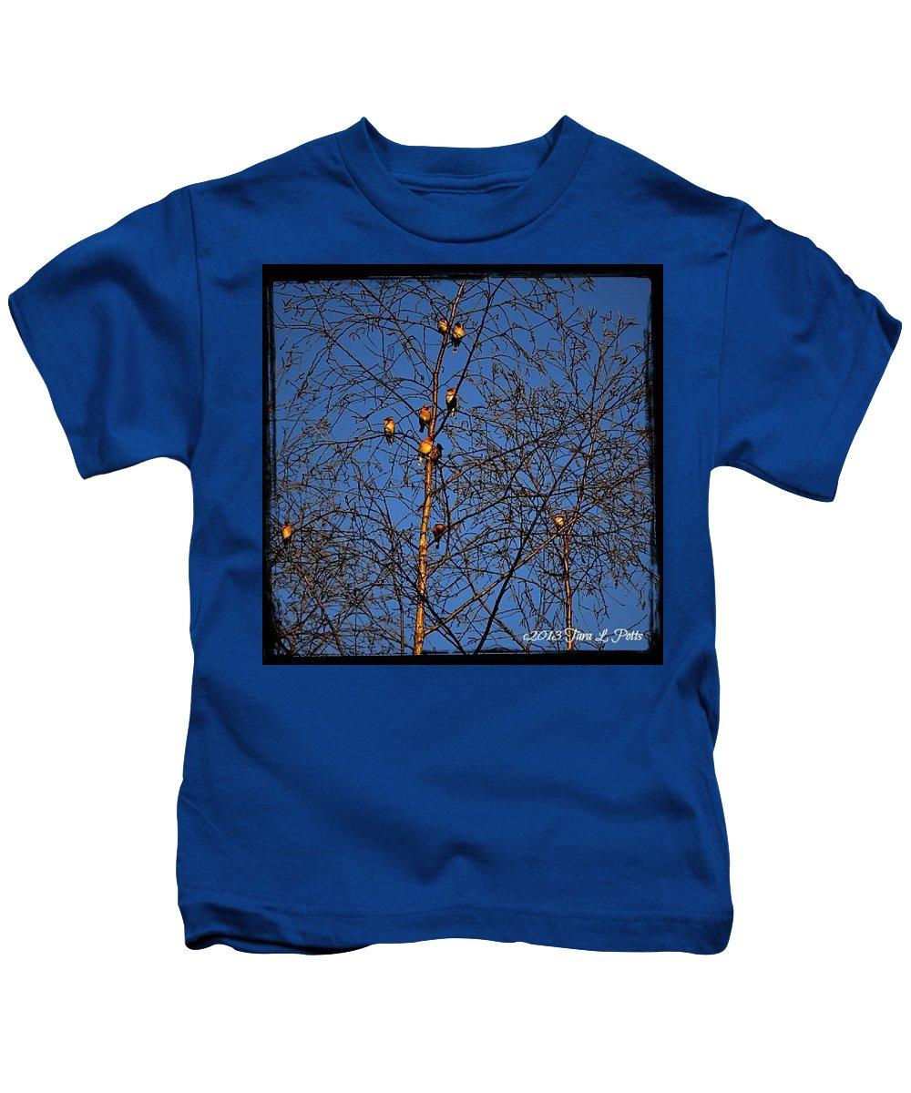 Birds Kids T-Shirt featuring the photograph Bird Tree by Tara Potts