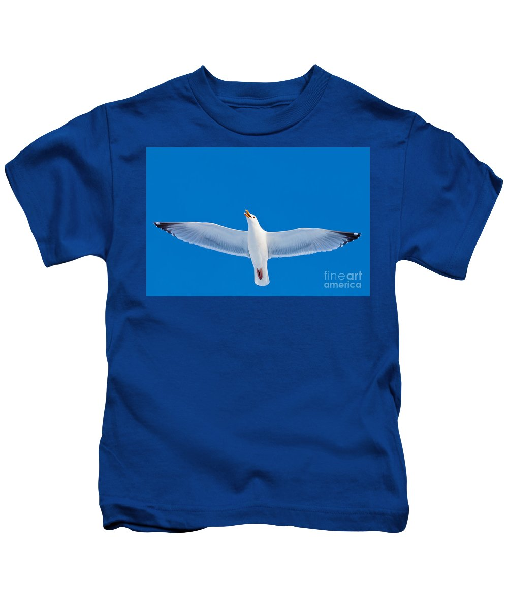 Larus Kids T-Shirt featuring the photograph Calling Herring Gull Flying In Blue Sky by Stephan Pietzko