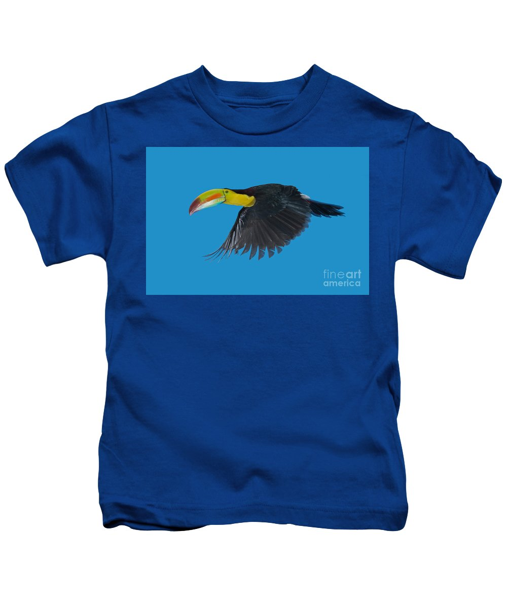 Animal Kids T-Shirt featuring the photograph Keel-billed Toucan by Anthony Mercieca