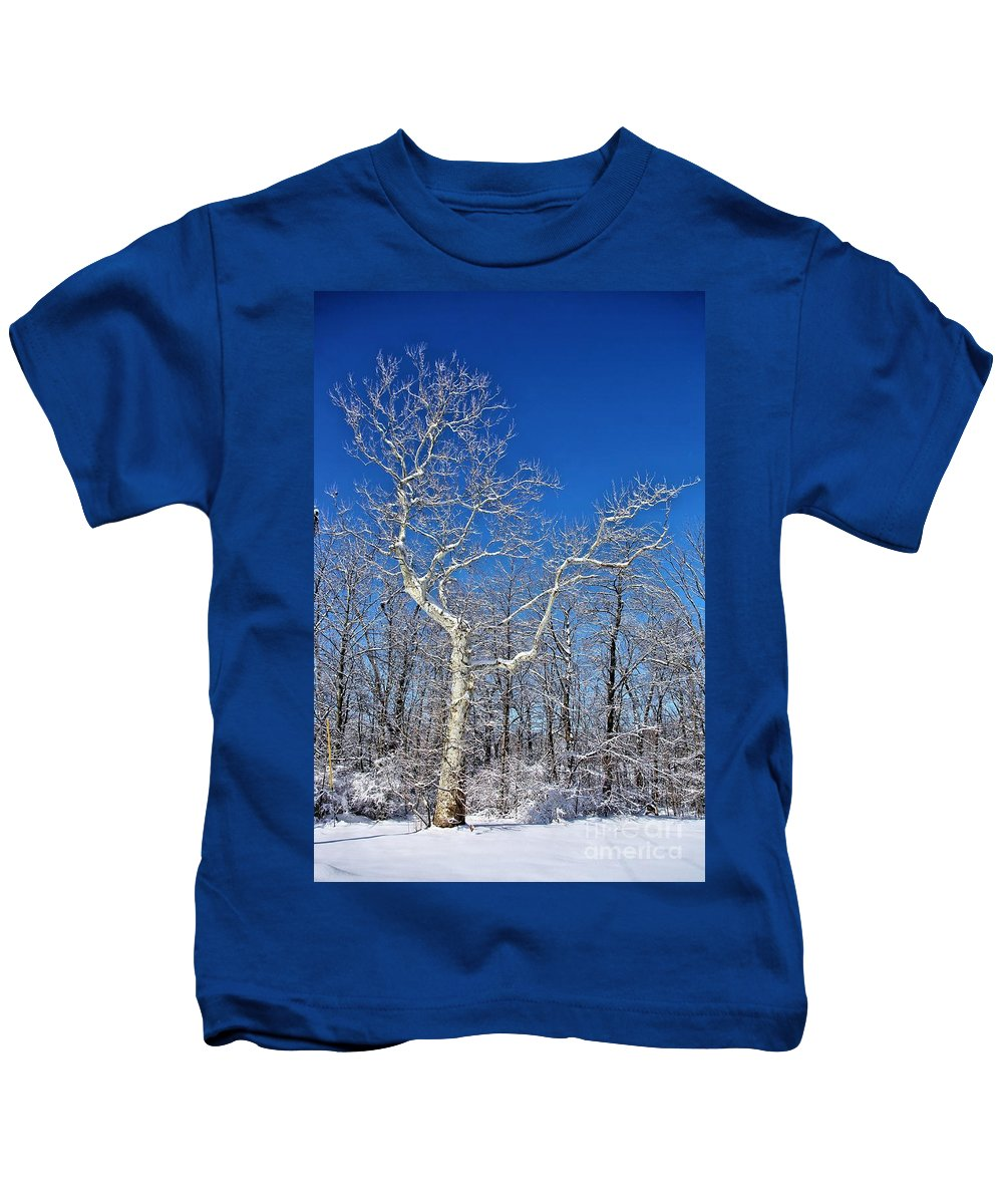 Winter Kids T-Shirt featuring the photograph Majestic Sycamore In Winter by Patti Smith