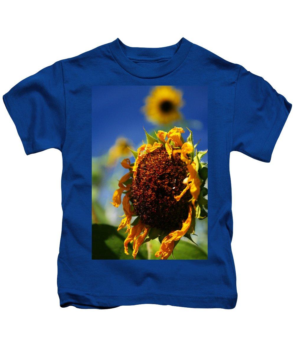 Sunflower Kids T-Shirt featuring the photograph Sunflower Four by David Sanchez