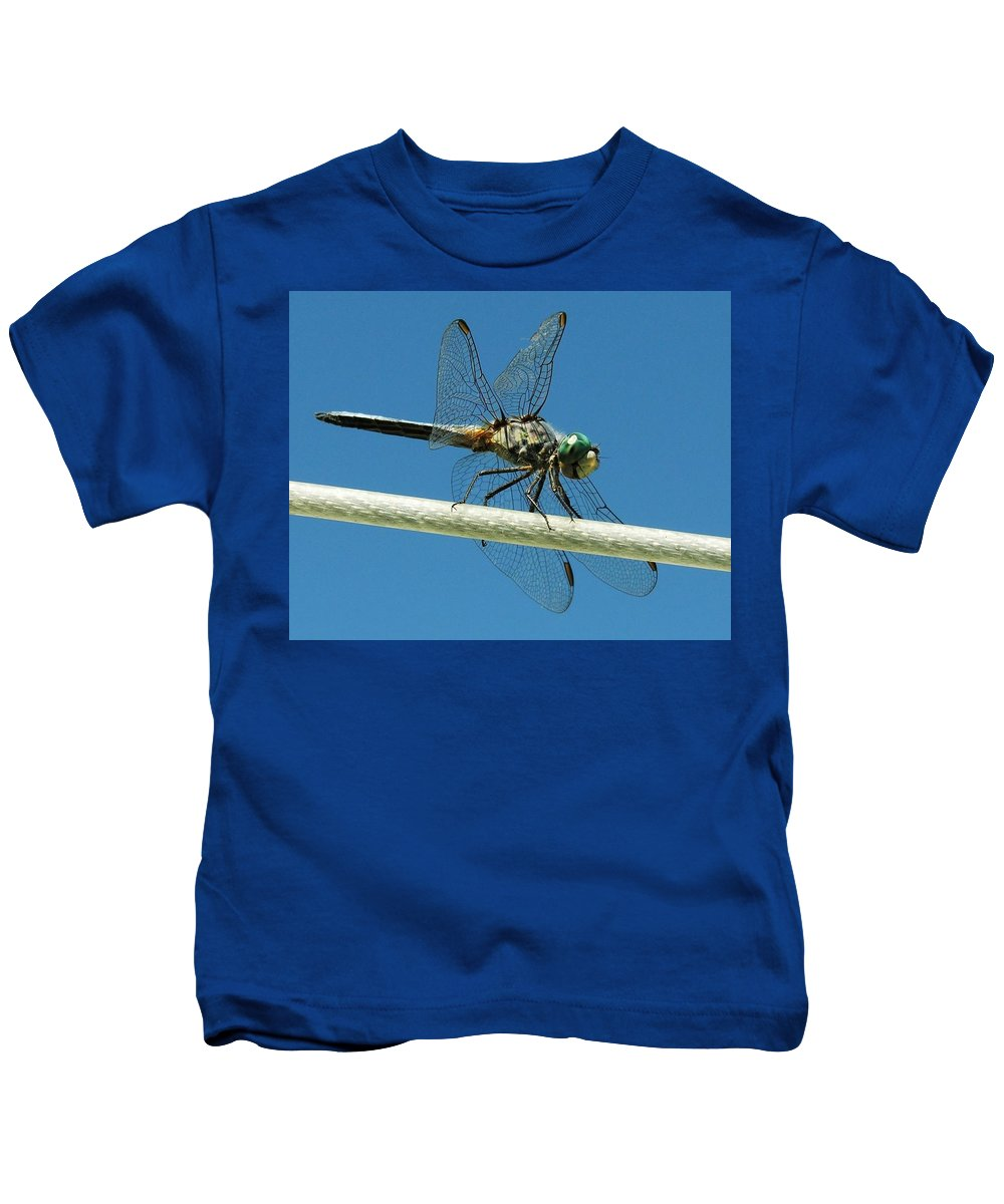 Dragonfly Kids T-Shirt featuring the photograph Tight Rope Walker by Ru Tover