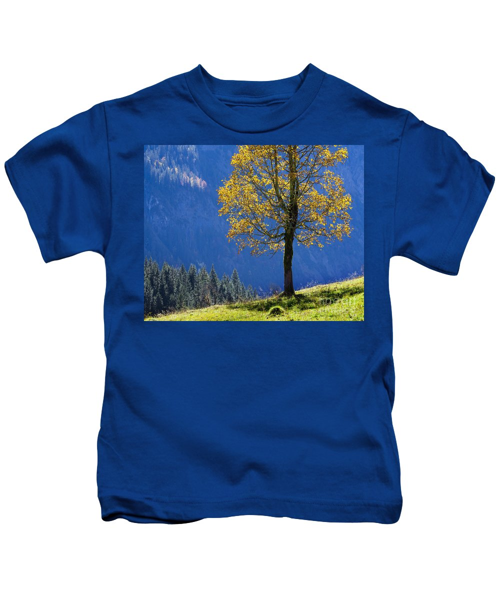 Single Kids T-Shirt featuring the photograph Tree Of Seasons by Edmund Nagele