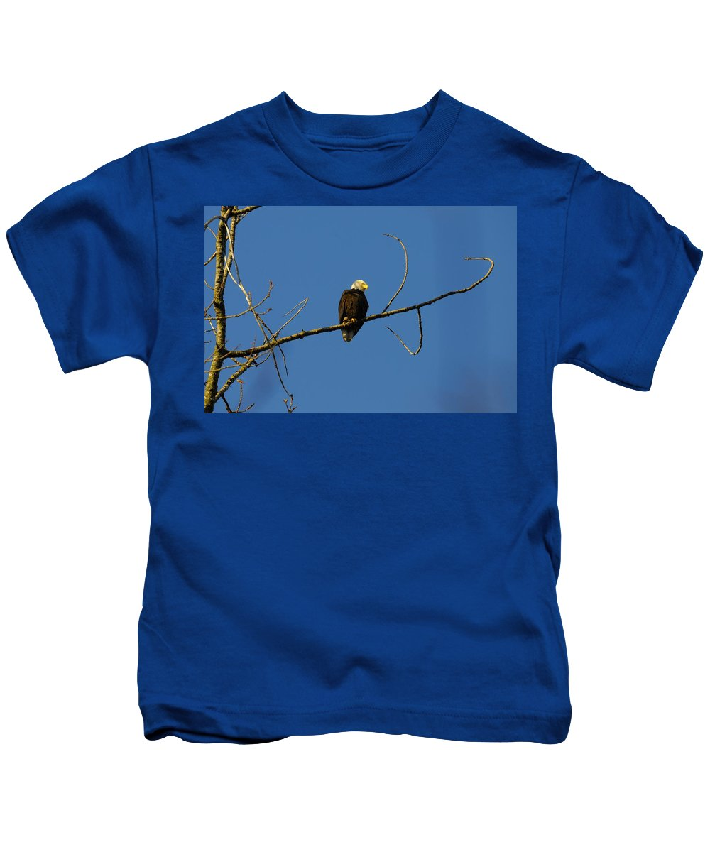 Eagle Kids T-Shirt featuring the photograph Bald Eagle by Martin Cooper