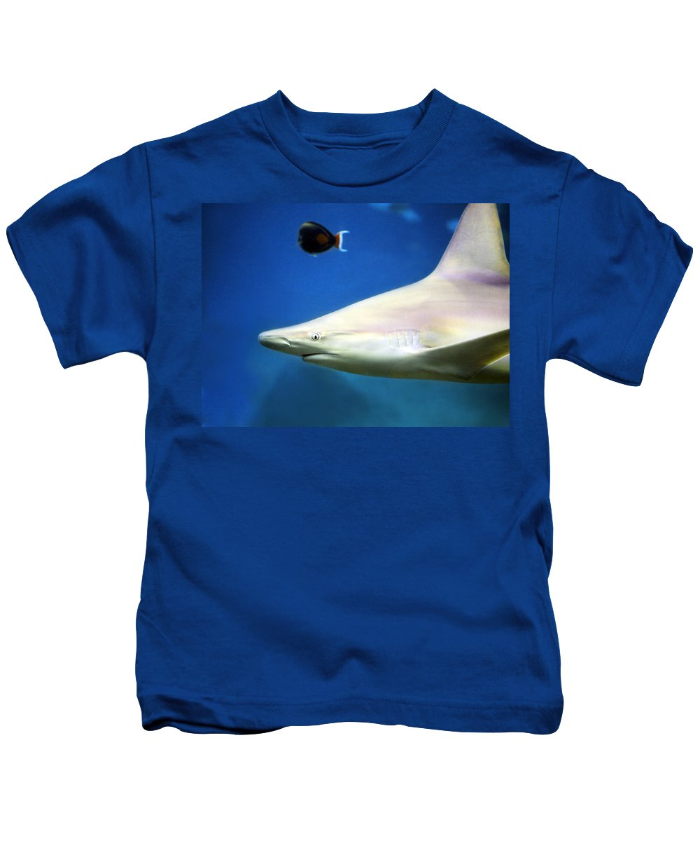 Big Kids T-Shirt featuring the photograph Big Fish Little Fish by Marilyn Hunt