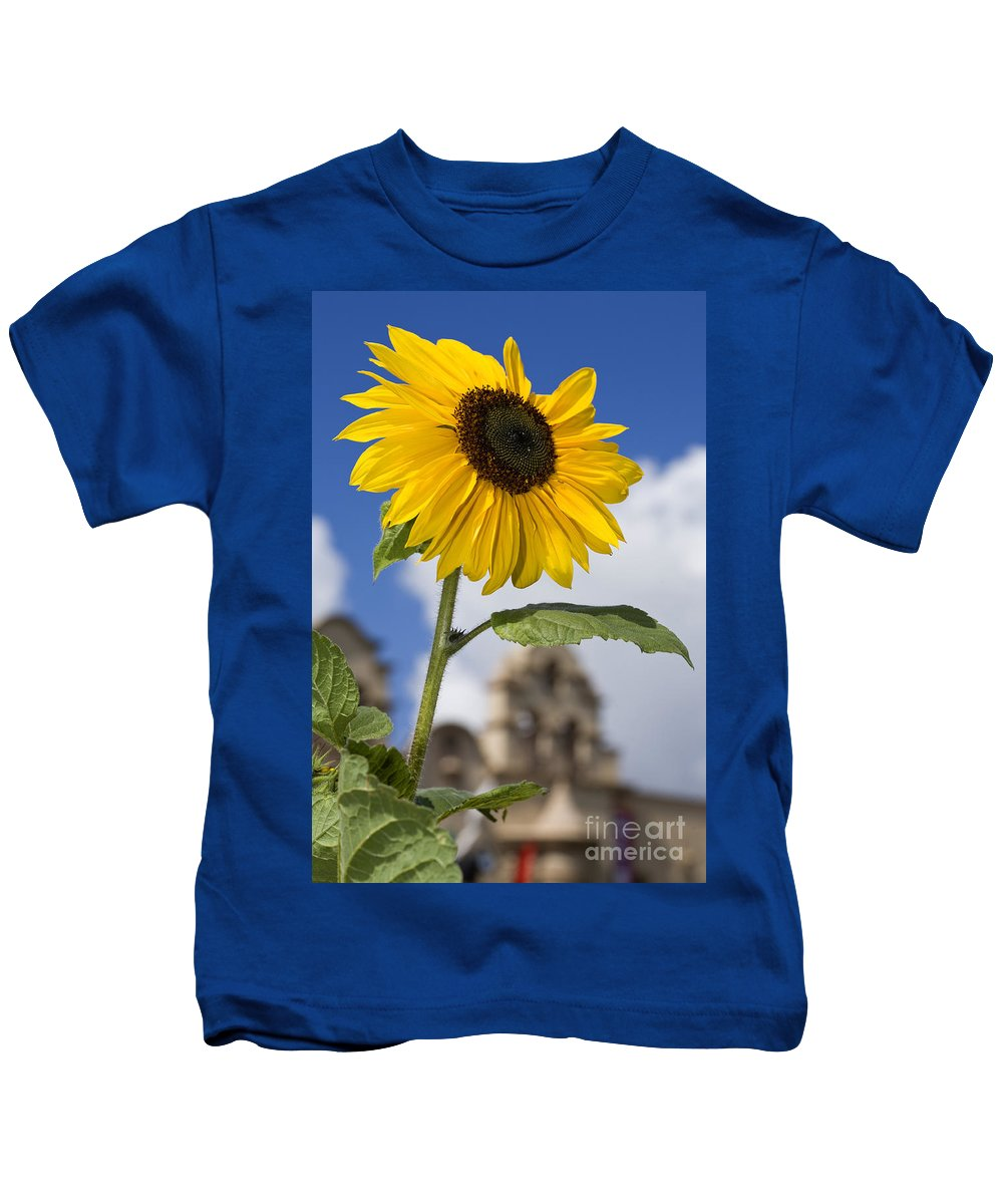 Sunflower Kids T-Shirt featuring the photograph Sunflower In Balboa Park by Daniel Knighton