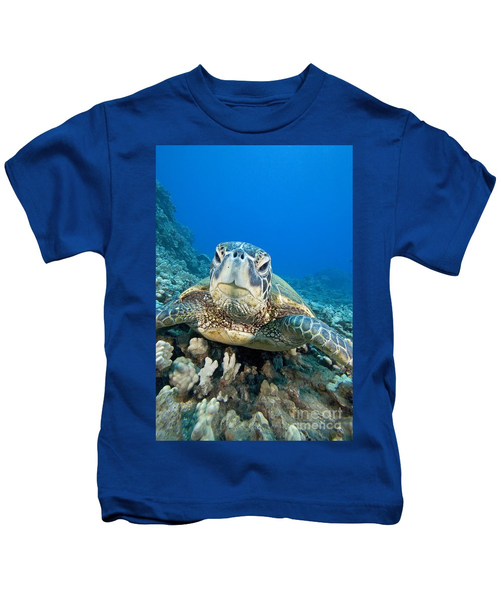 Animal Art Kids T-Shirt featuring the photograph Hawaii, Green Sea Turtle by Dave Fleetham - Printscapes