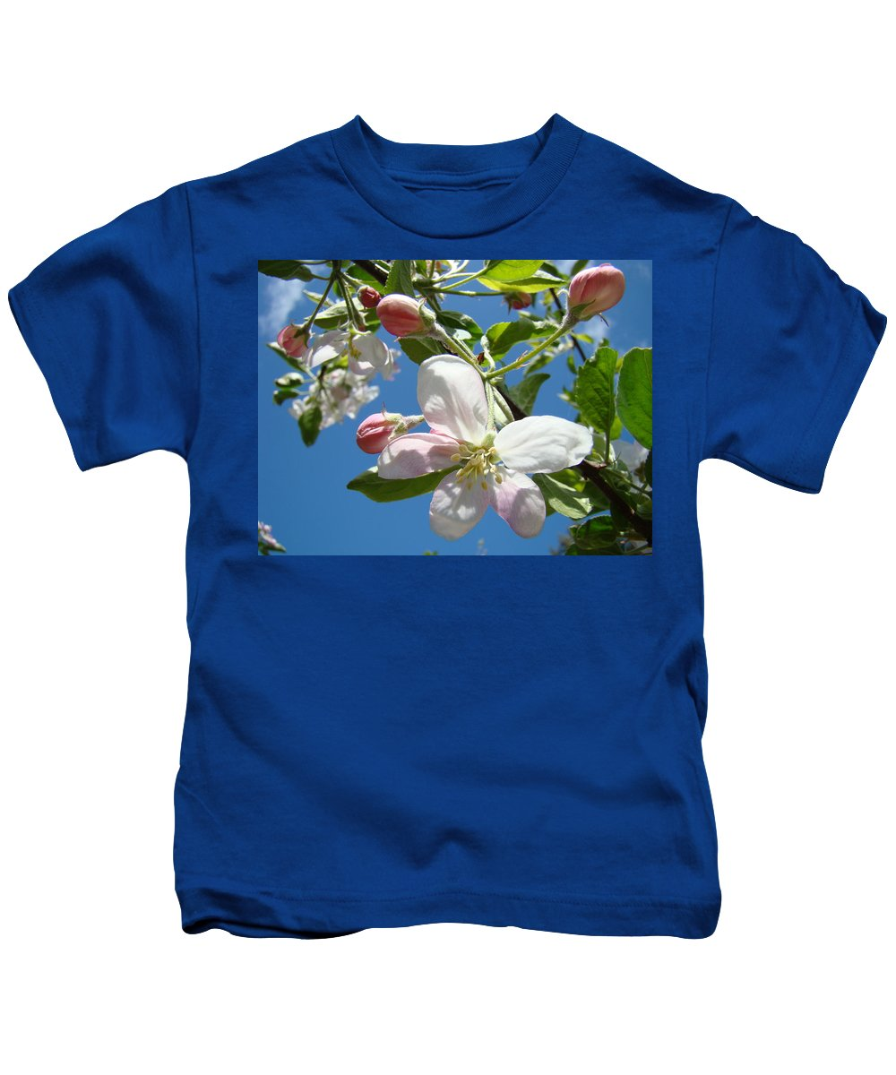 Apple Kids T-Shirt featuring the photograph Apple Blossoms Art Prints Blue Sky Spring Baslee Troutman by Baslee Troutman