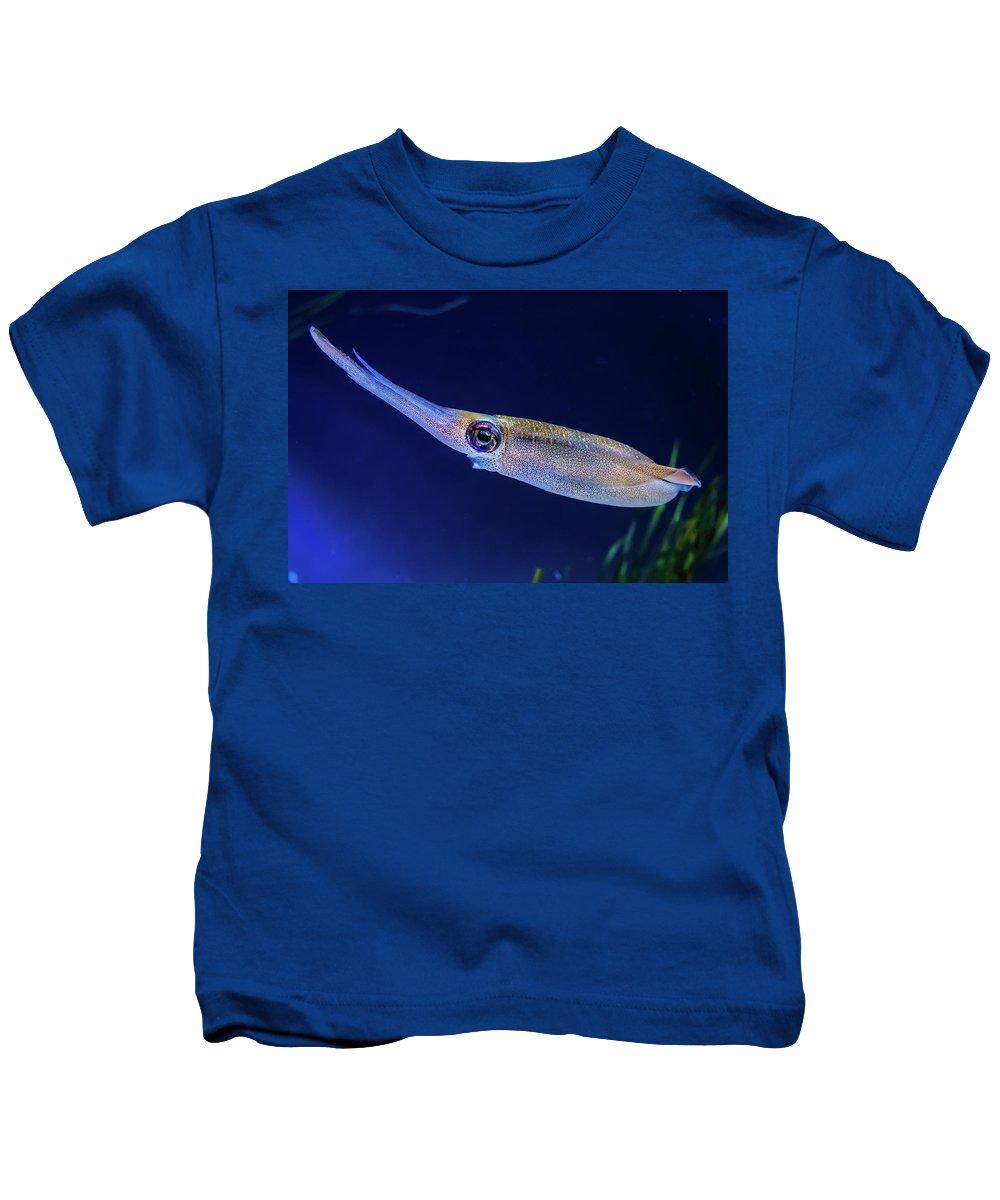 Aquatic Kids T-Shirt featuring the photograph Bigfin Reef Squid by David A Litman