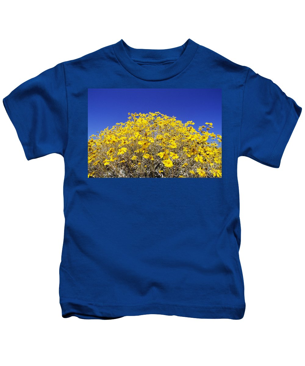 Autumn Kids T-Shirt featuring the photograph Brittlebush by Greg Vaughn - Printscapes