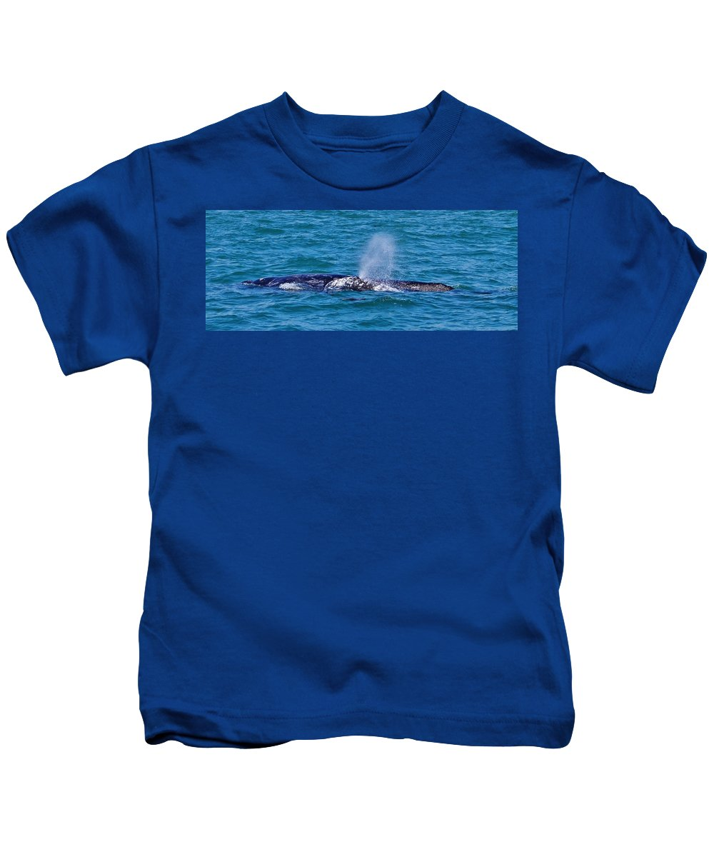 Whales Kids T-Shirt featuring the photograph Dana Point 3 by Eileen Brymer