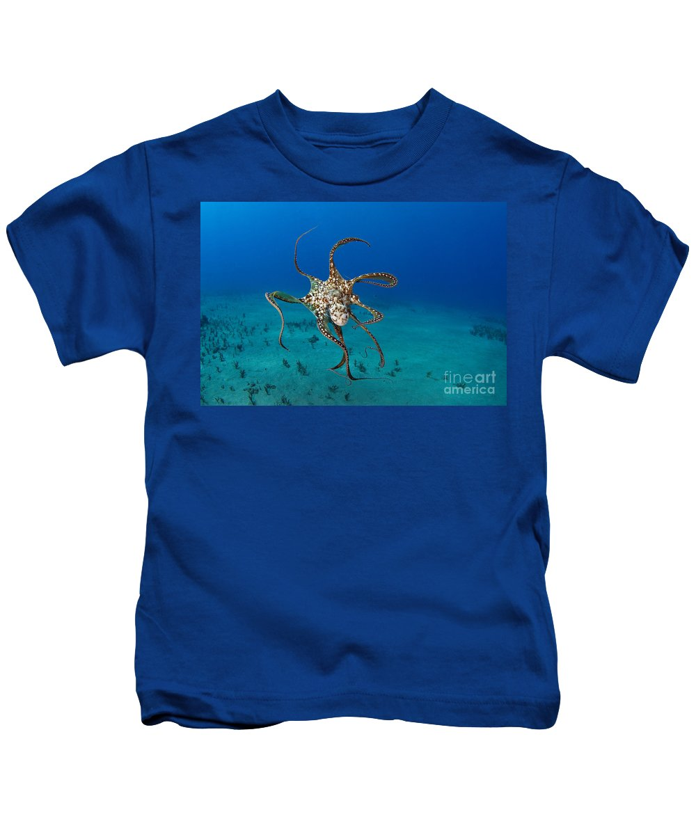 Animal Art Kids T-Shirt featuring the photograph Day Octopus by Dave Fleetham - Printscapes