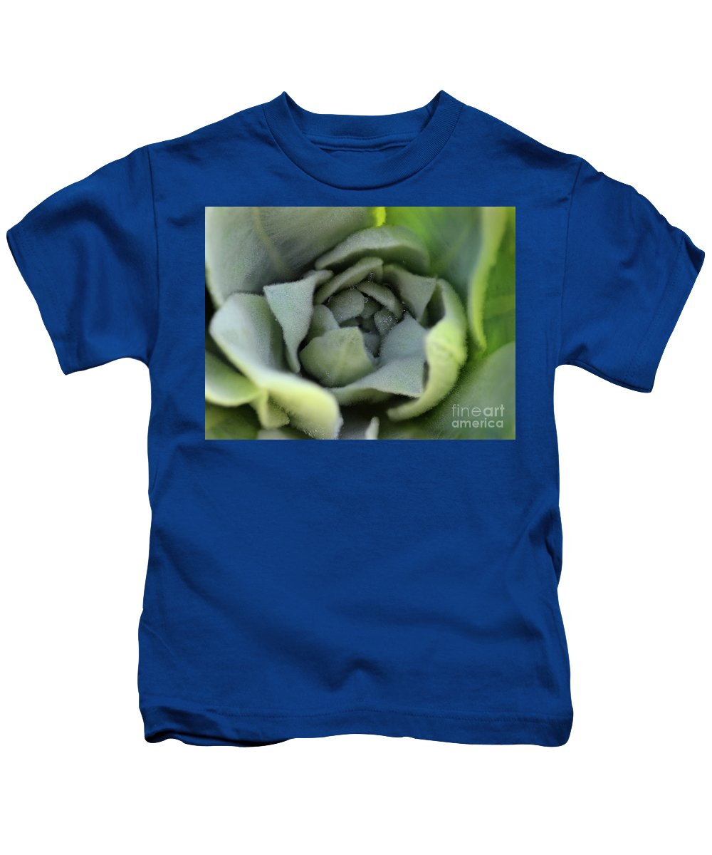 Mullein Kids T-Shirt featuring the photograph Dew On Common Mullein by Karen Adams