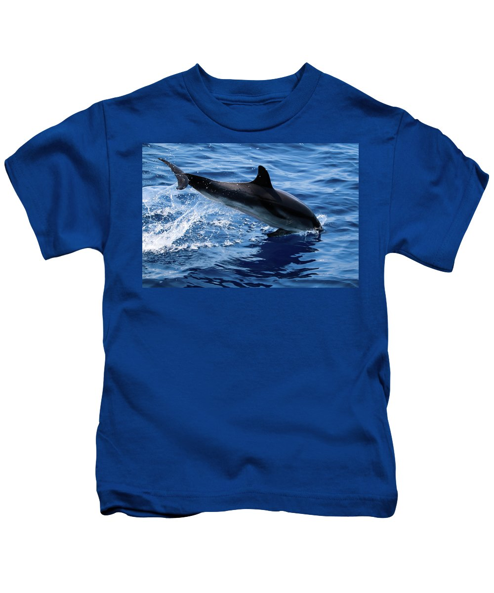 Dolphin Kids T-Shirt featuring the digital art Dolphin by Dorothy Binder