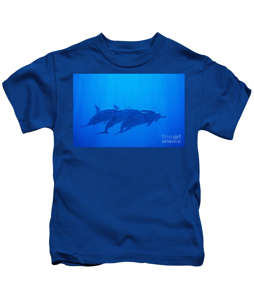 Animal Art Kids T-Shirt featuring the photograph Dolphin Pod by Joss - Printscapes