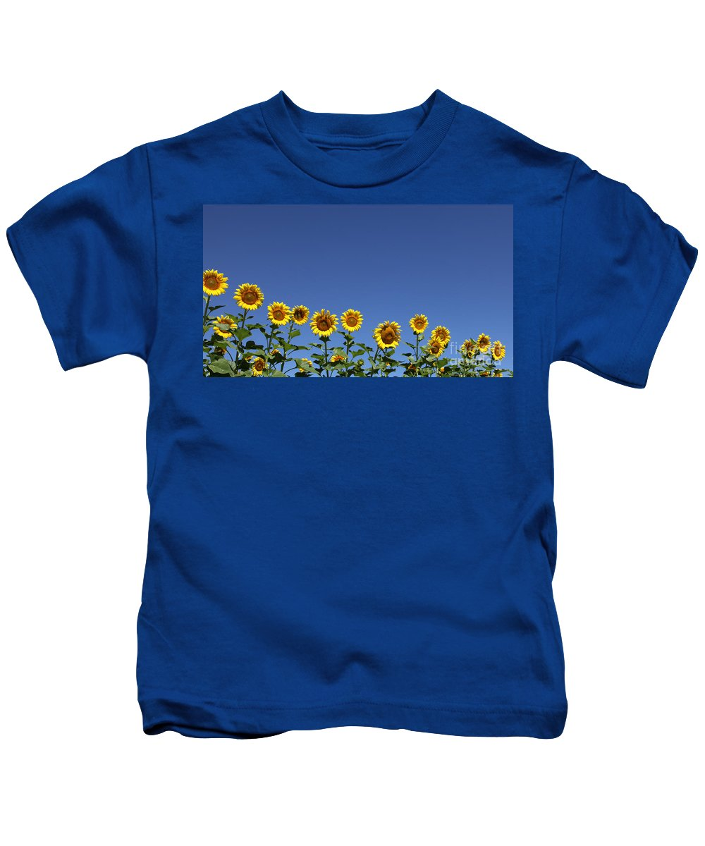Sunflowers Kids T-Shirt featuring the photograph Family Time by Amanda Barcon