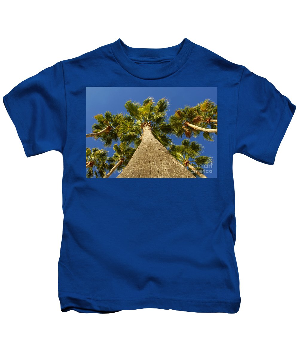 Florida. Palm Trees. Tropical Kids T-Shirt featuring the photograph Florida Palms by David Lee Thompson