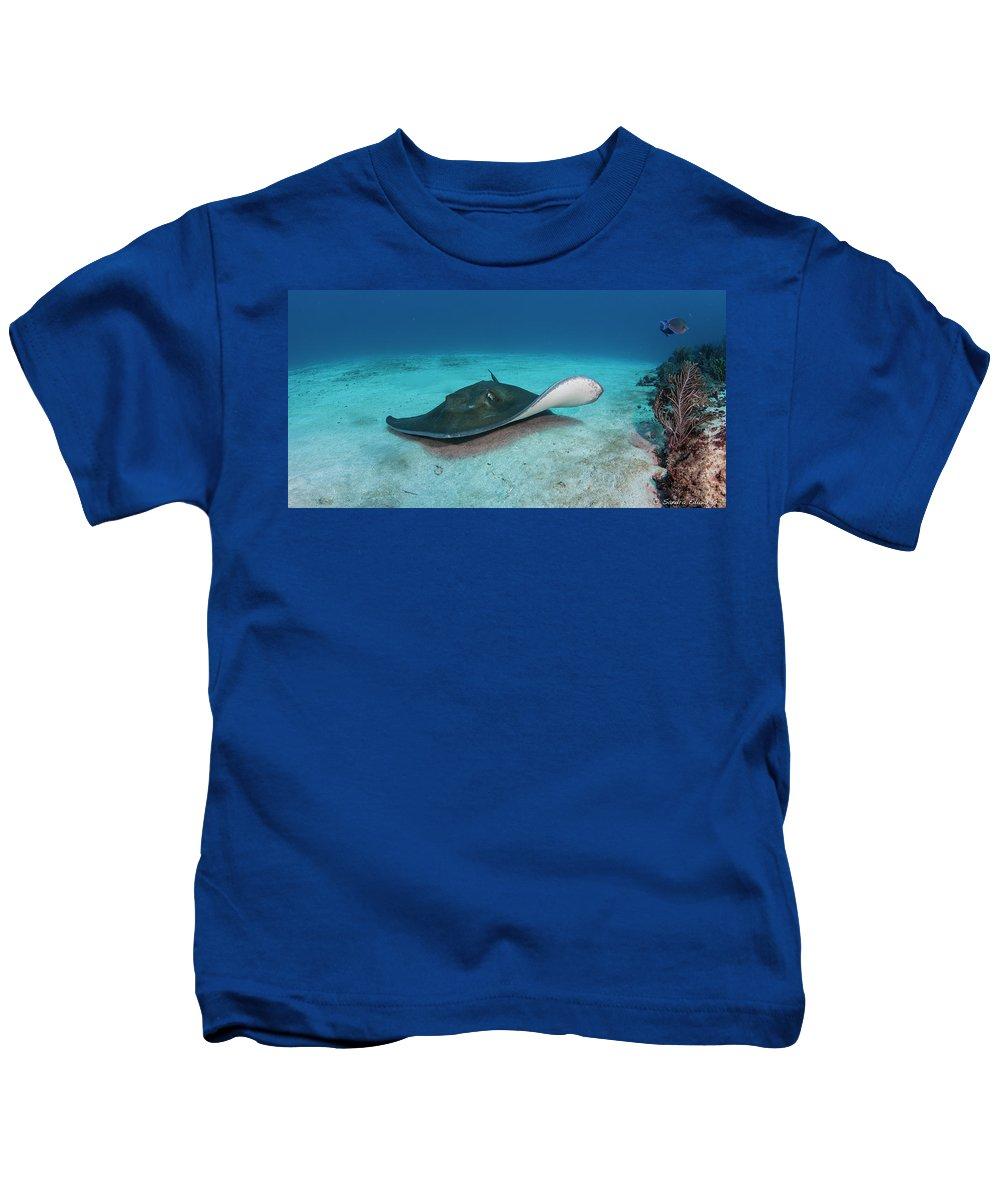 Stingray Kids T-Shirt featuring the photograph Landing by Sandra Edwards