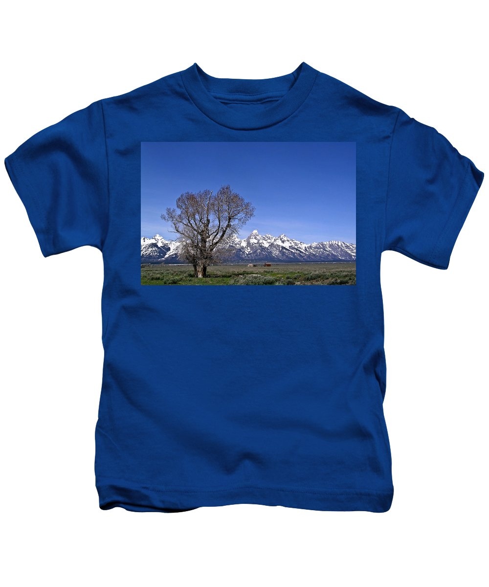 Tree Kids T-Shirt featuring the photograph Lone Tree At Tetons by Douglas Barnett