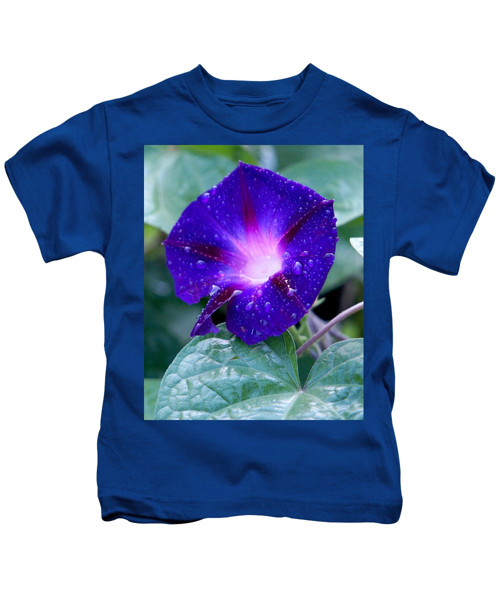 Flower Rain Green Purple Blue Blossom Nature Macro Morning Glory Kids T-Shirt featuring the photograph Morning Glory by Pete Mikelson