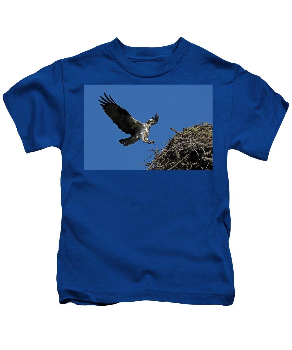 Avian Kids T-Shirt featuring the photograph Osprey Landing Approach - Oregon Coast by Randall Ingalls