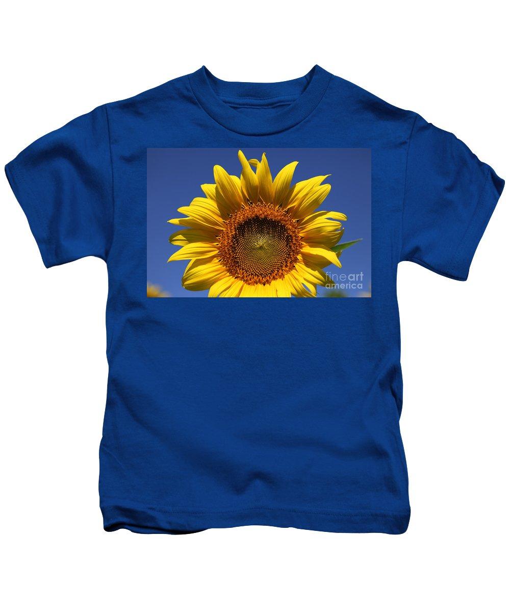 Sunflowers Kids T-Shirt featuring the photograph Peek A Boo by Amanda Barcon