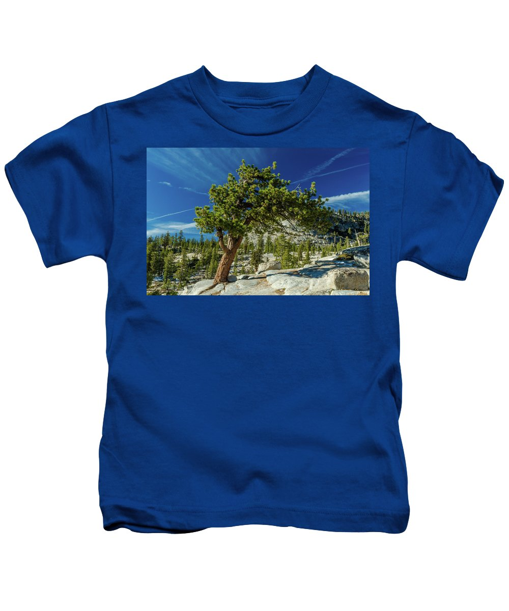 Landscape Kids T-Shirt featuring the photograph Pine Tree In Yosemite by Javier Flores