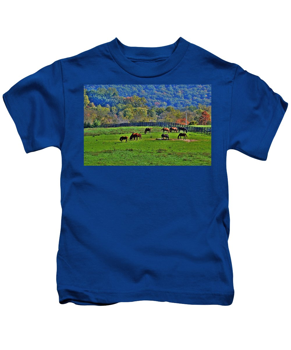 Horses Kids T-Shirt featuring the photograph Rescue Horses by Eileen Brymer