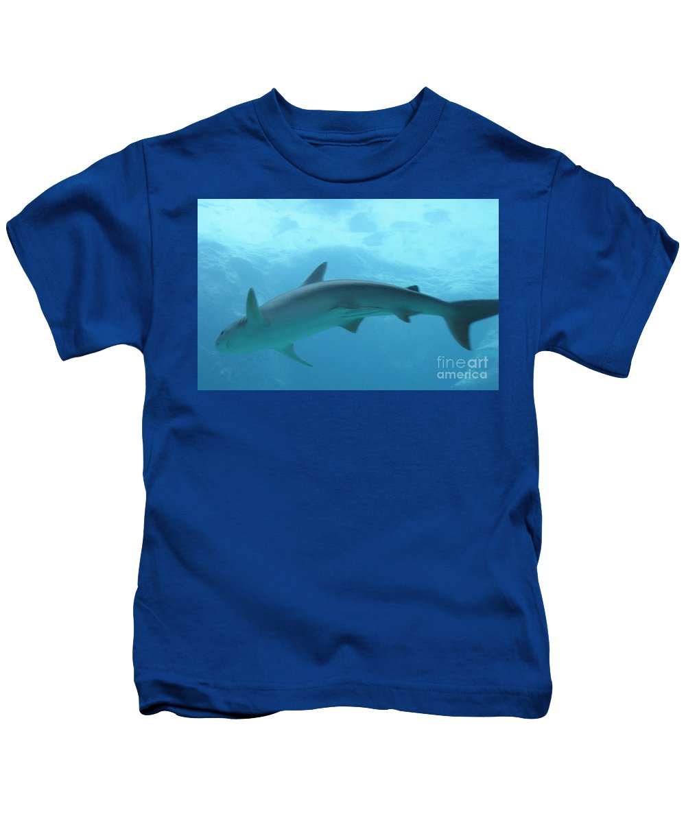 Fish Kids T-Shirt featuring the photograph Shark by Michelle Powell