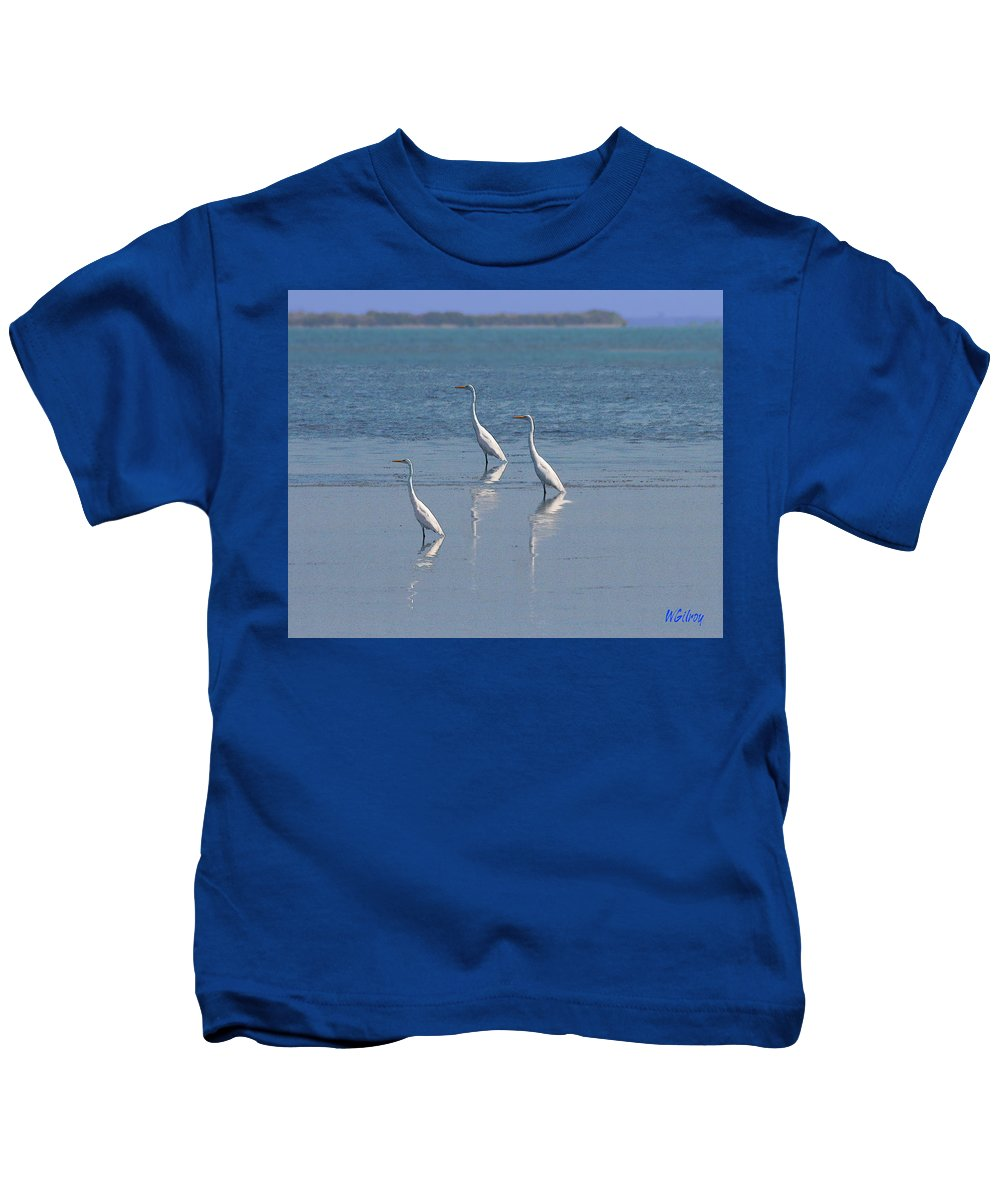 Terns Kids T-Shirt featuring the photograph three Egrets by W Gilroy