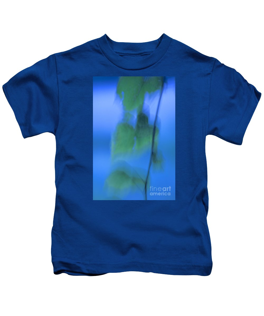 Abstract Kids T-Shirt featuring the photograph Twig And Leaf - D009634a by Daniel Dempster