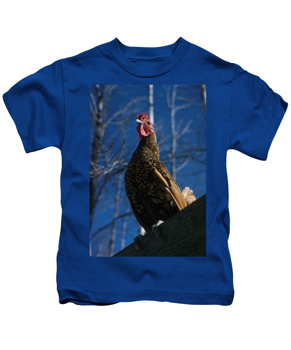 Chicken Kids T-Shirt featuring the photograph Vernon by Jerry McElroy
