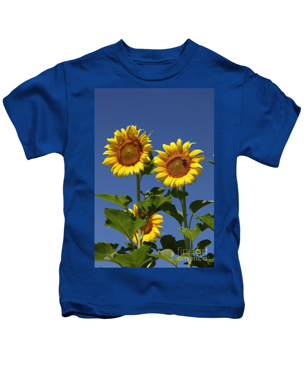 Sunflower Kids T-Shirt featuring the photograph Viewing The Past by Amanda Barcon