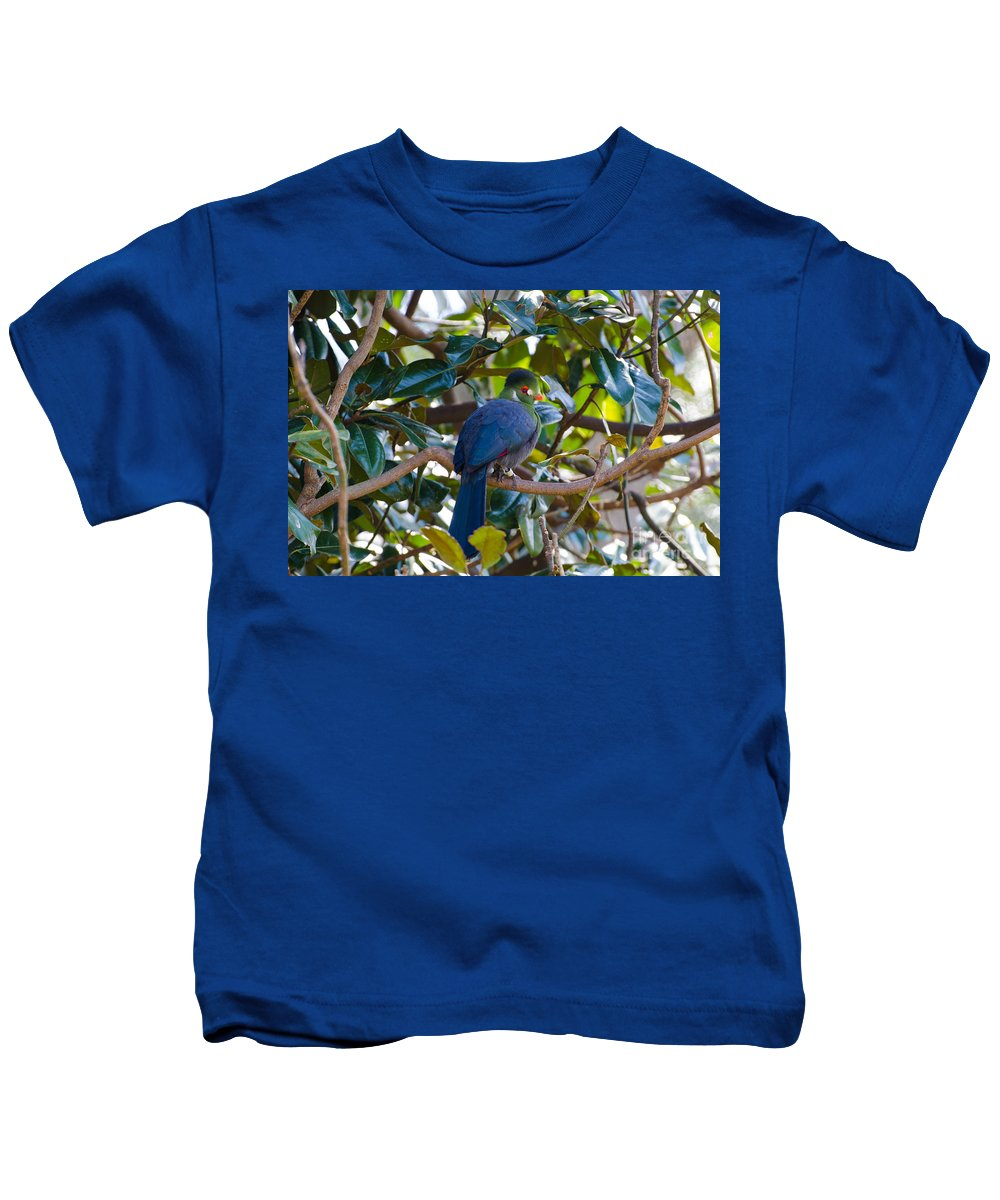 Bird Kids T-Shirt featuring the photograph White-cheeked Turaco by Donna Brown