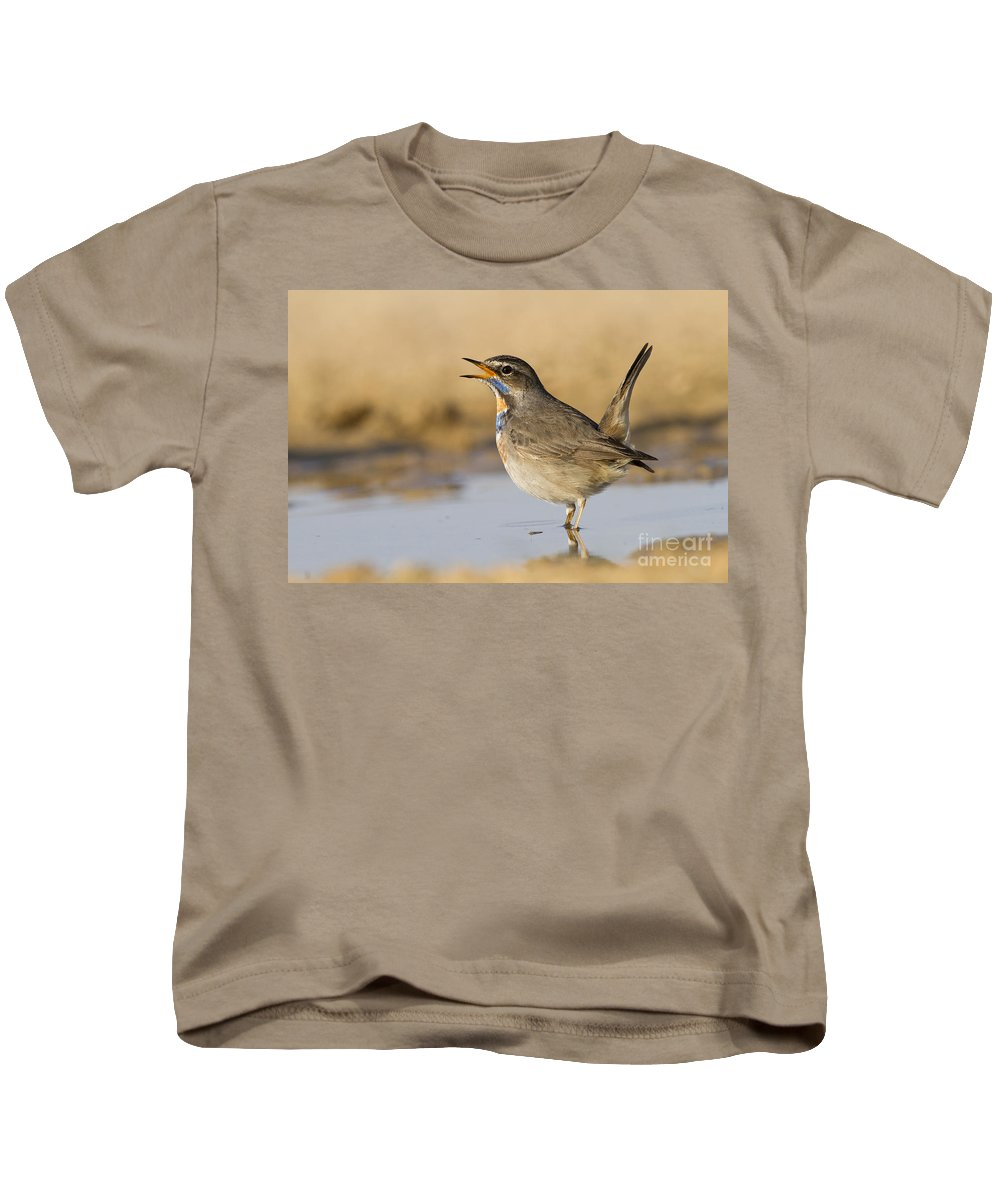 Bluethroat Kids T-Shirt featuring the photograph Bluethroat Luscinia Svecica by Eyal Bartov