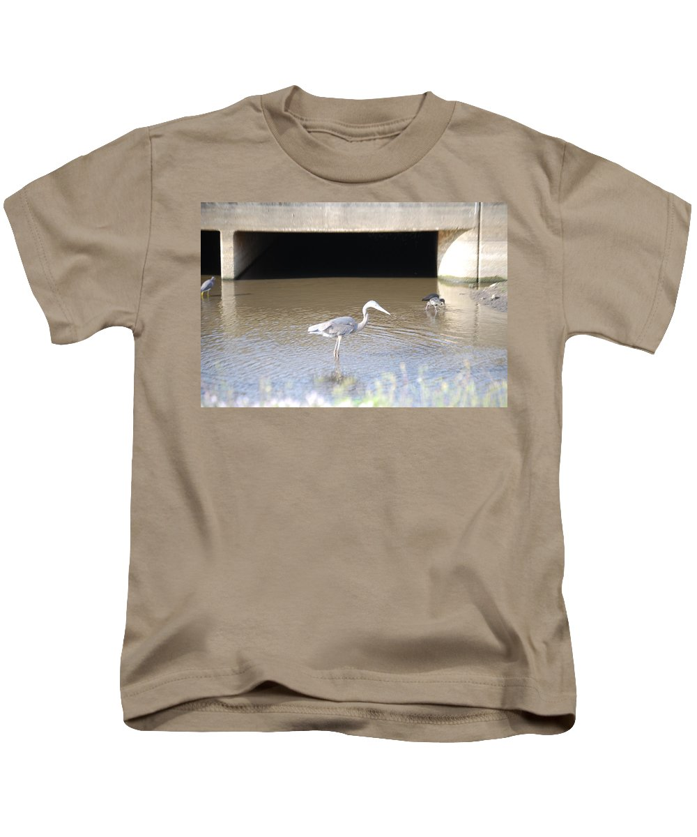 Group Feeding Hole. Florida Kids T-Shirt featuring the photograph Great Blue Heron by Robert Floyd