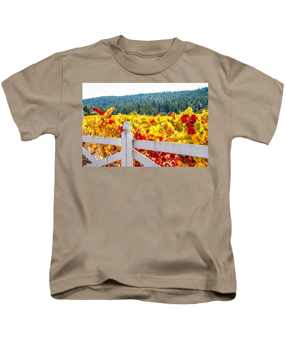 Napa Kids T-Shirt featuring the photograph Napa Fall Grapes by Brian Williamson