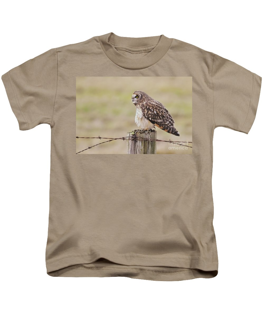 Short Eared Owl Kids T-Shirt featuring the photograph Short Eared Owl by Sharon Talson