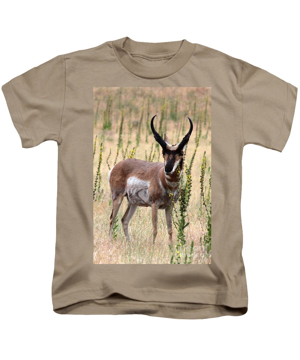 Utah Kids T-Shirt featuring the photograph Where The Antelope Play by Jemmy Archer