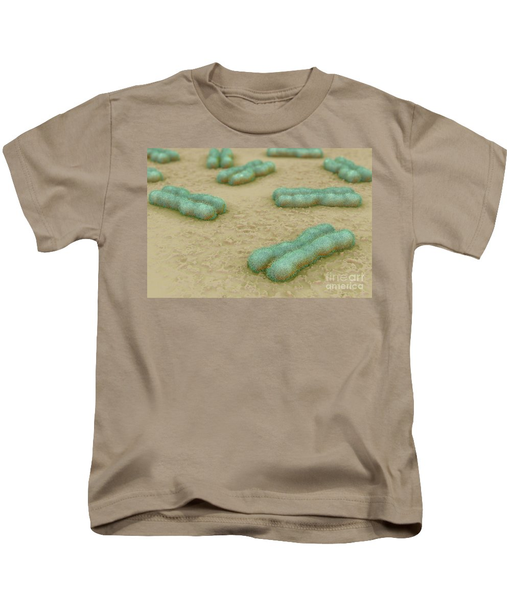 Centromere Kids T-Shirt featuring the photograph Human Chromosomes by Science Picture Co