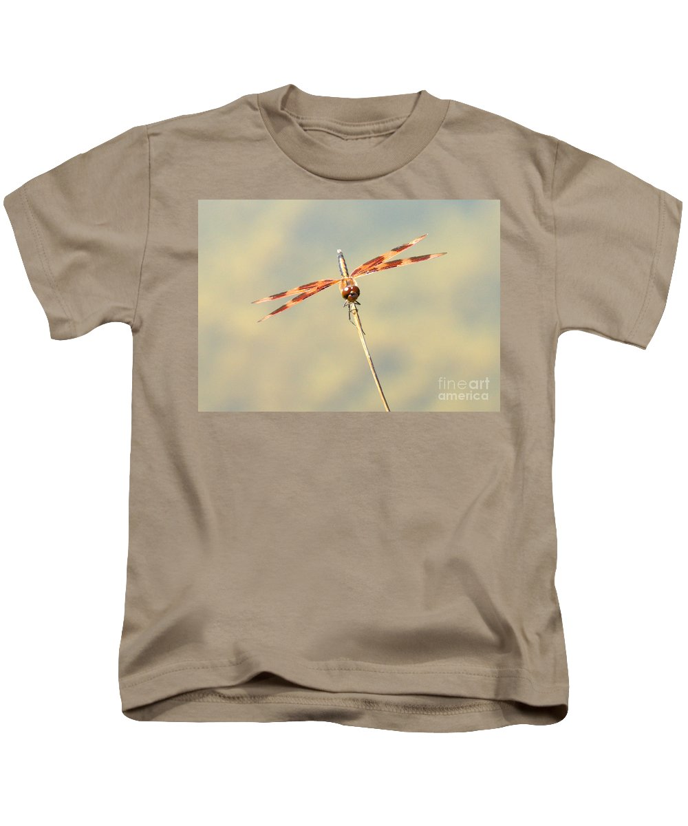 Dragonfly Kids T-Shirt featuring the photograph Eyes by Cheryl Baxter