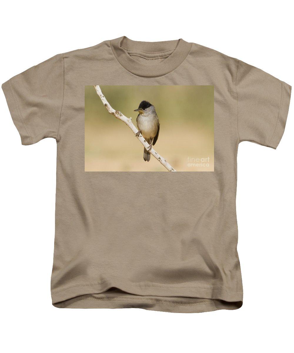 Blackcap Kids T-Shirt featuring the photograph Male Eurasian Blackcap by Eyal Bartov