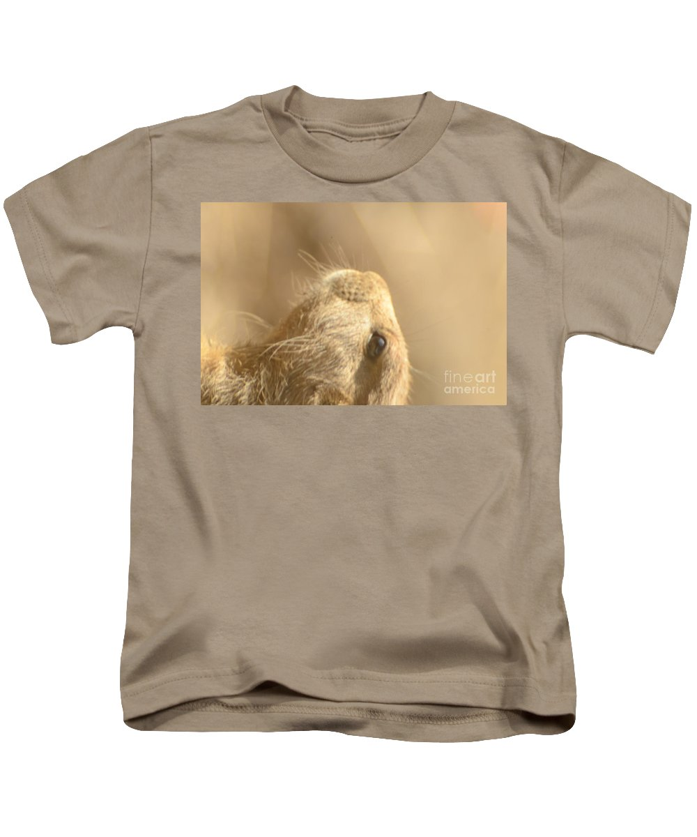 Animal Kids T-Shirt featuring the photograph Prairie Dog by Randy J Heath
