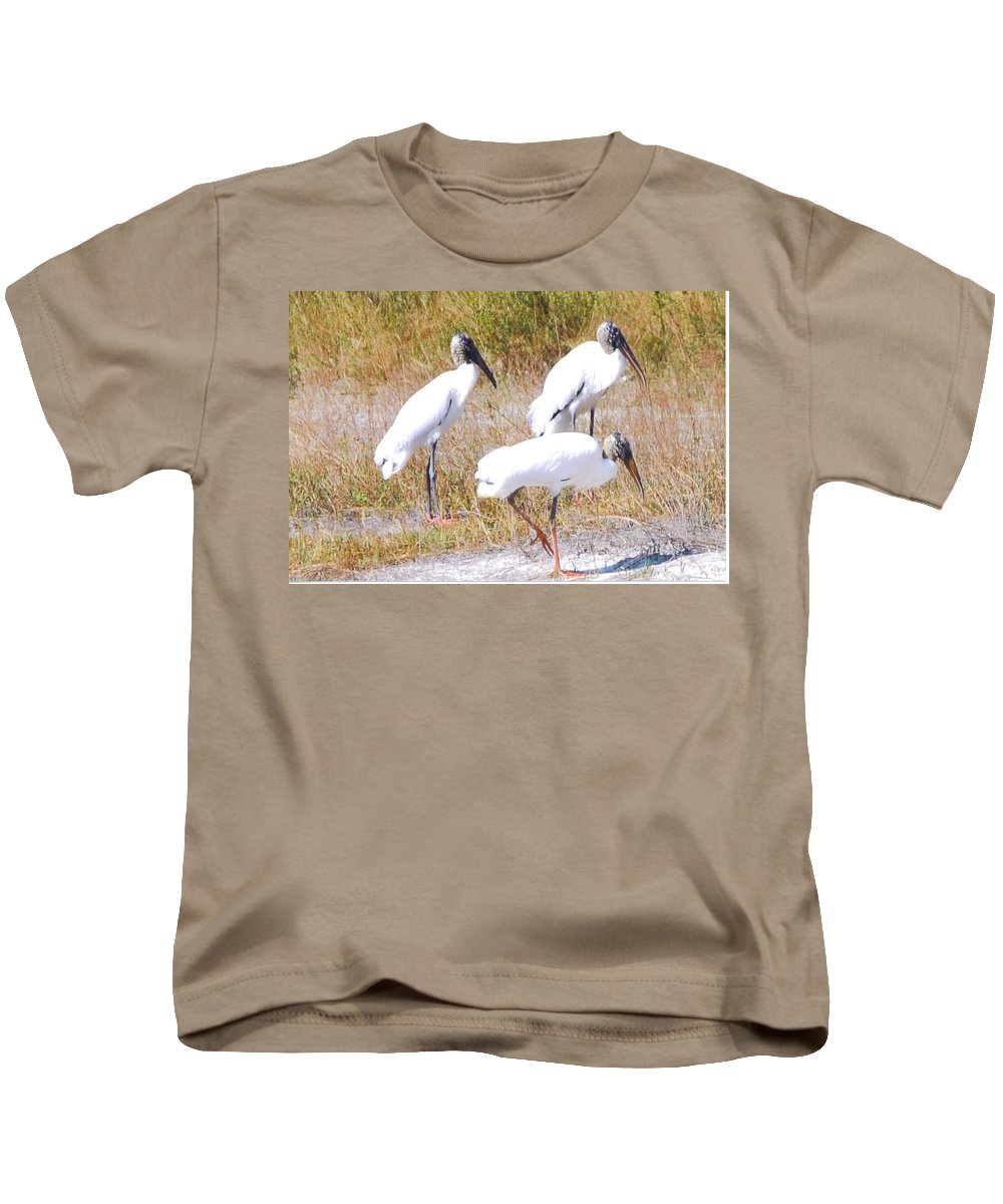 Gathering At Lakes Park In Ft.myers Kids T-Shirt featuring the photograph Wood Storks by Robert Floyd