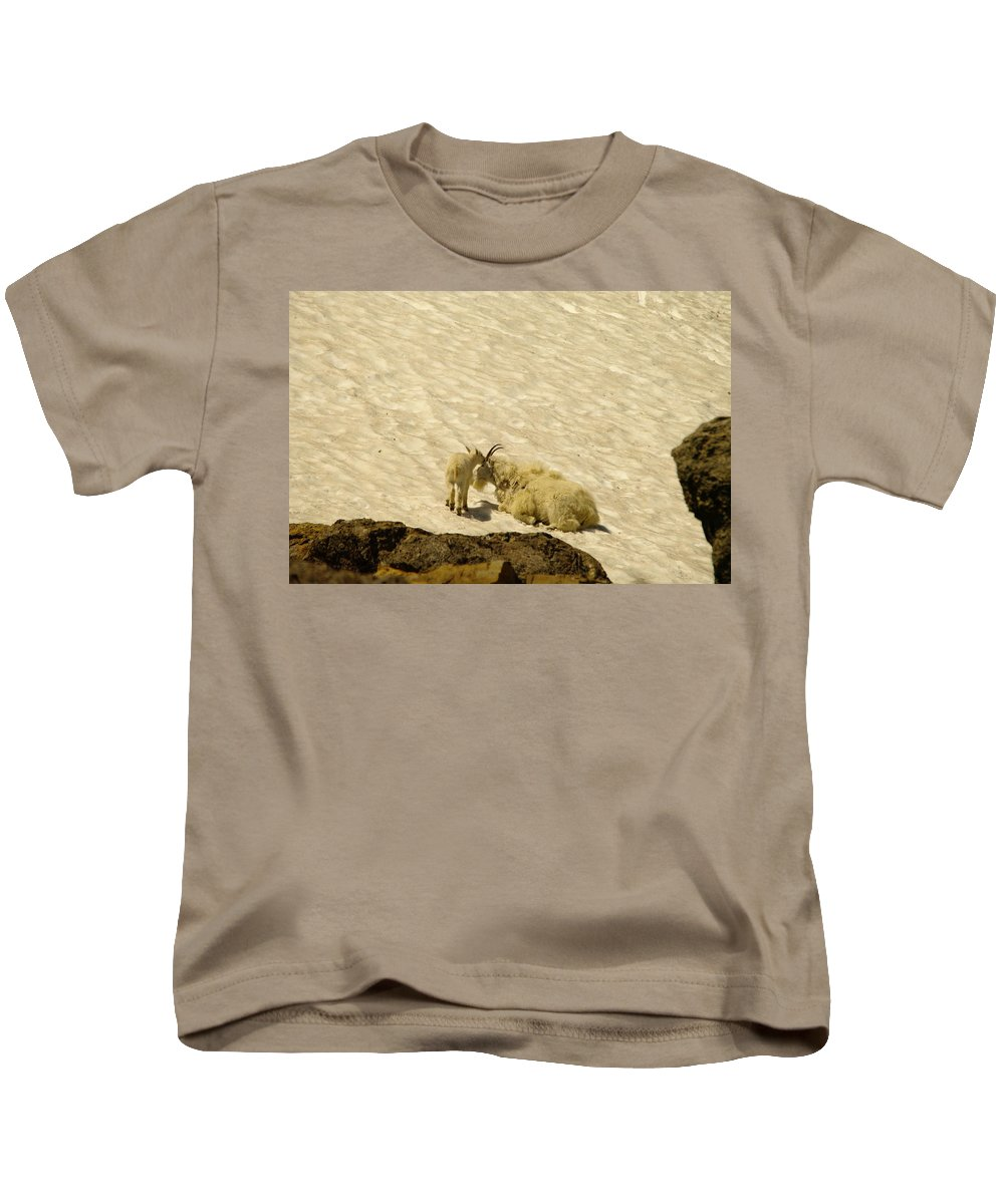 Mountain Goats Kids T-Shirt featuring the photograph A Kiss For Mom by Jeff Swan