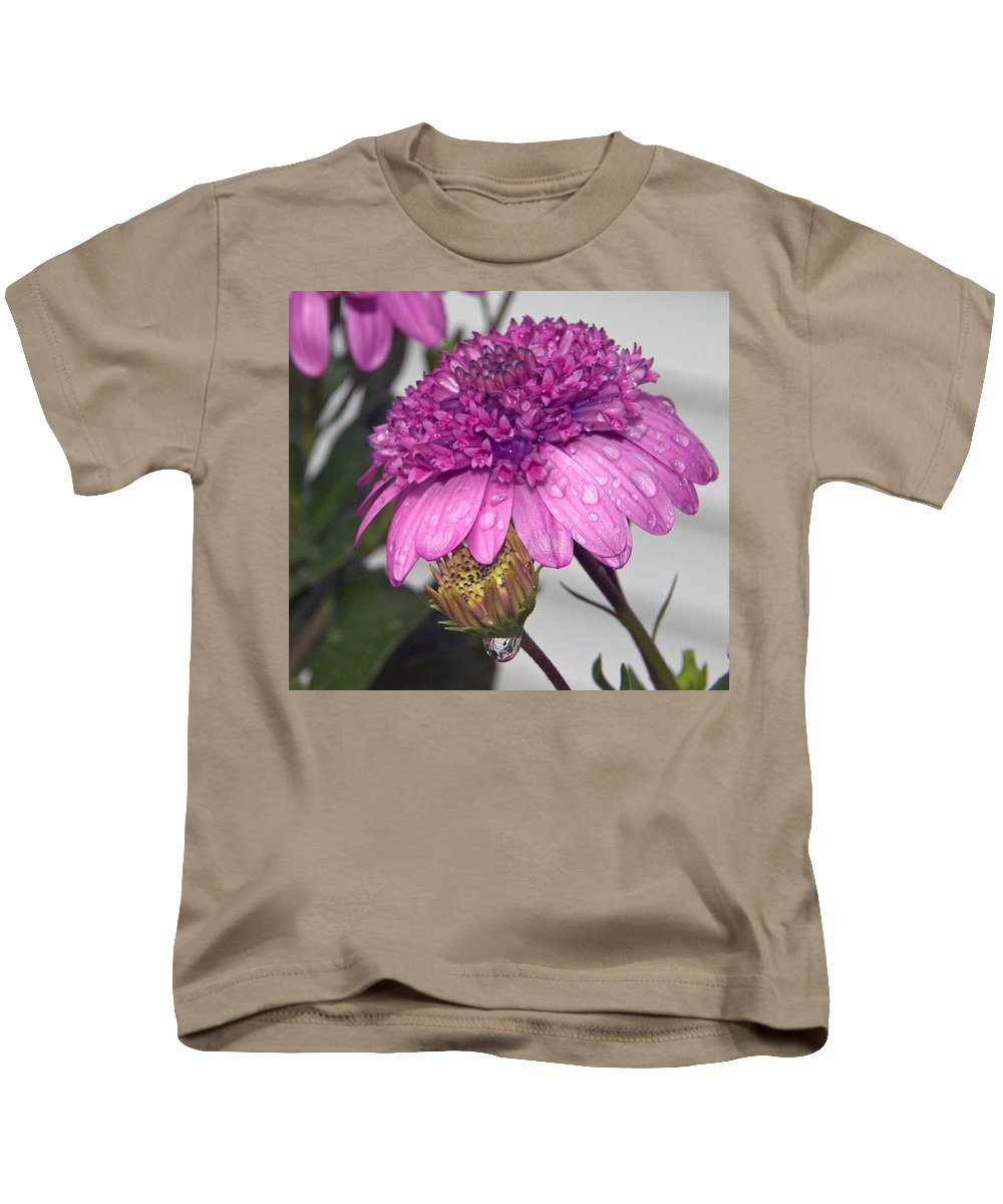 Close Up Kids T-Shirt featuring the photograph African Daisy by Catherine Melvin