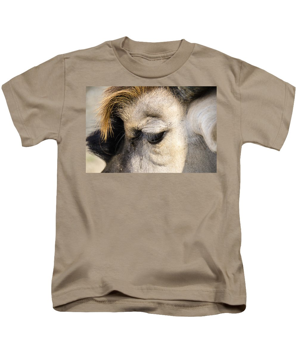 Animal Photographs Kids T-Shirt featuring the photograph Animals Can Be Beautiful by Sotiris Filippou