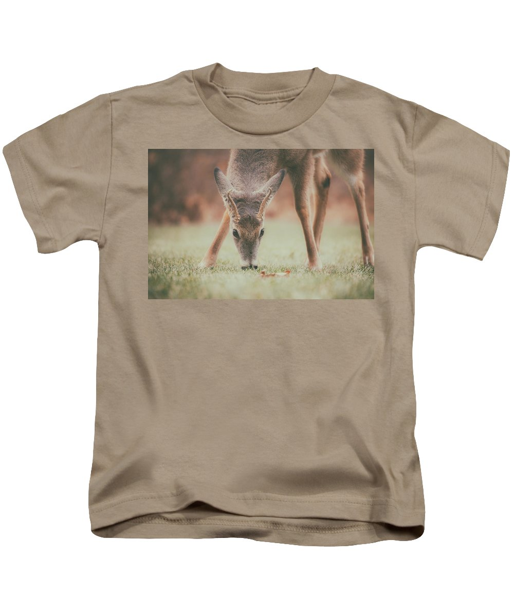 Natures Winter Visit Kids T-Shirt featuring the photograph Backyard Beauty by Karol Livote