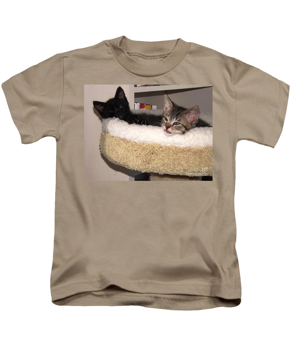 Kitten Kids T-Shirt featuring the photograph Beethoven Symphony At Rest by Jussta Jussta