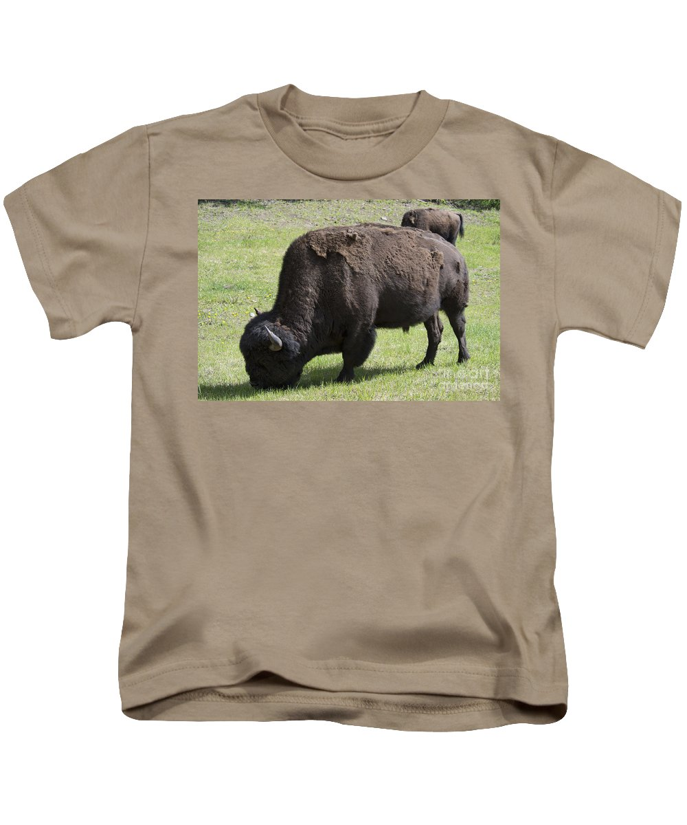Wood Bison Kids T-Shirt featuring the photograph Bison by David Arment